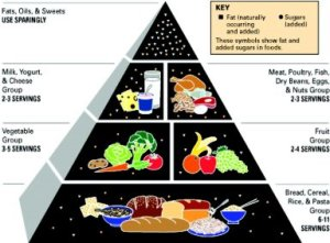 foodpyramid1992