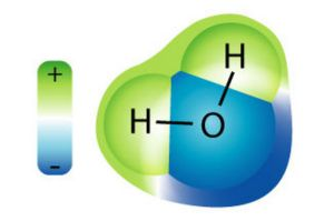 molecula de apa