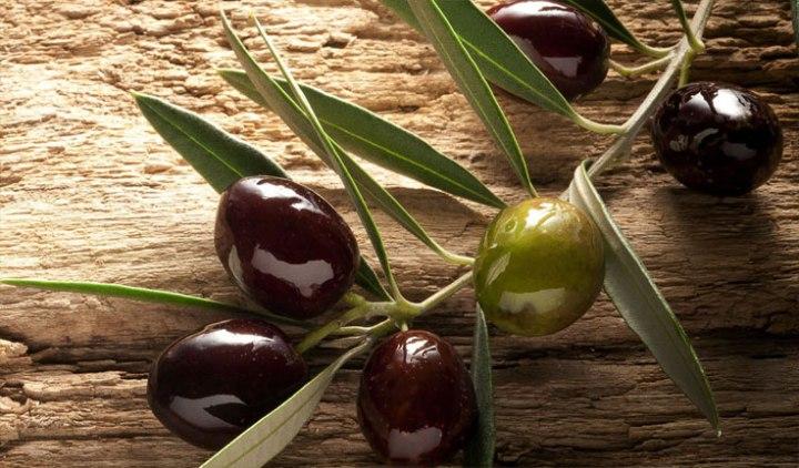 italian-food-specialties-olives