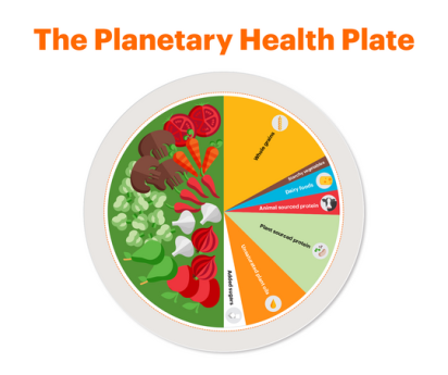 planetary healthy plate